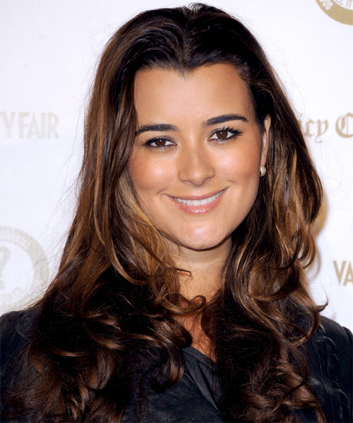 Cote de Pablo Long Straight Hairstyle - Dark Brunette