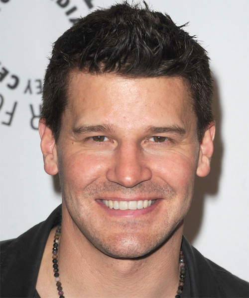 David Boreanaz Short Straight Hairstyle - Dark Brunette (Ash)