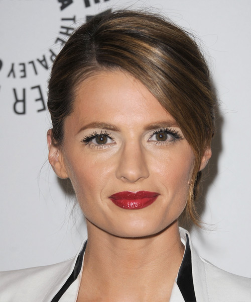 Stana Katic Straight Formal Updo Hairstyle with Side Swept Bangs - Medium Brunette Hair Color