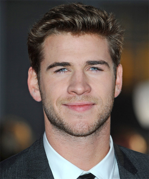 Liam Hemsworth Short Straight Hairstyle - Medium Brunette (Ash)