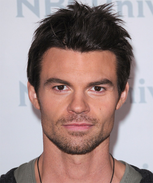 Daniel Gillies Short Straight Hairstyle - Dark Brunette