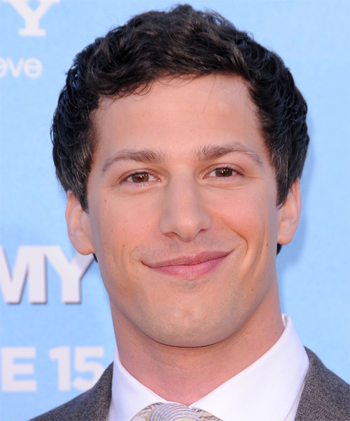 Andy Samberg Short Wavy Hairstyle - Dark Brunette (Mocha)