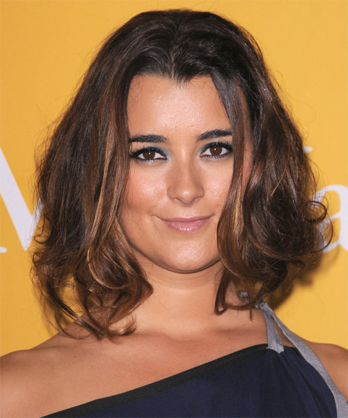 Cote de Pablo Medium Straight Casual Hairstyle - Dark Brunette Hair Color