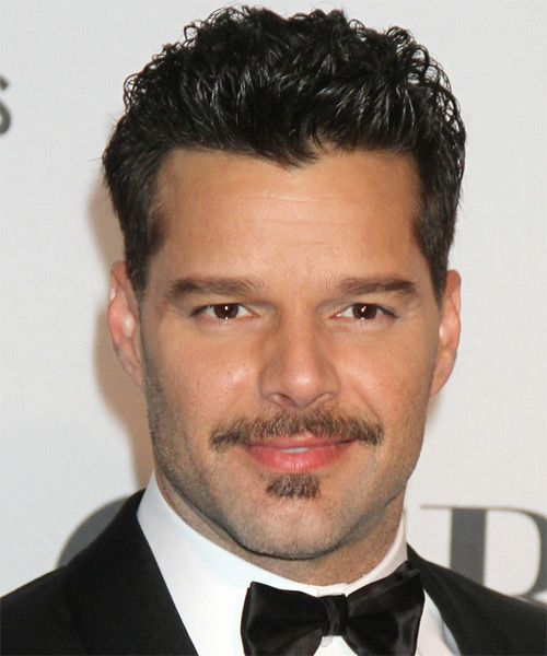 Ricky Martin Short Straight Hairstyle - Black