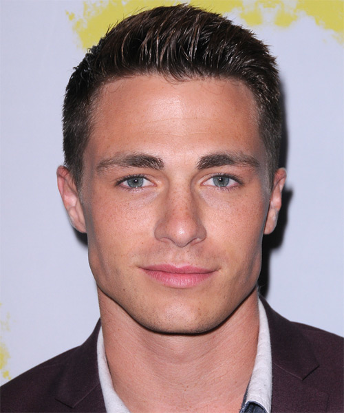 Colton Haynes Short Straight Formal Hairstyle - Dark Brunette Hair Color