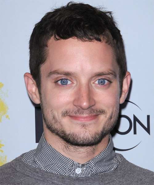 Elijah Wood Short Straight Casual Hairstyle  Dark - Hairstyler