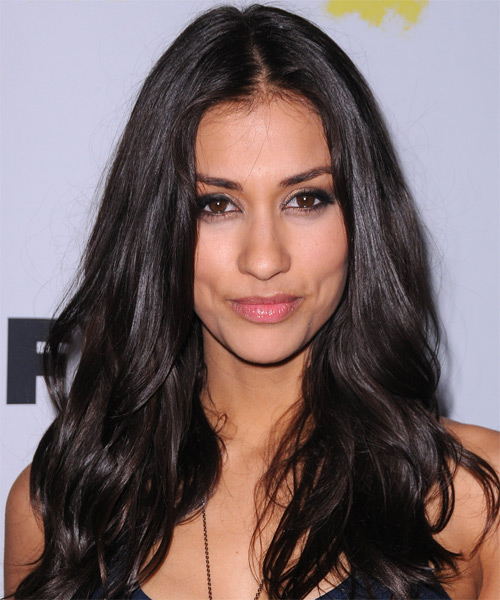 Janina Gavankar Long Straight Hairstyle - Black