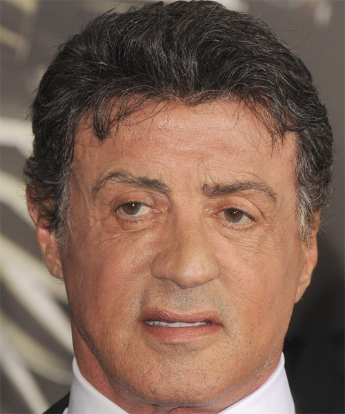 Sylvester Stallone  Short Straight Hairstyle - Medium Grey