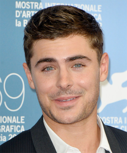 Zac Efron Short Straight Hairstyle - Dark Blonde (Ash)