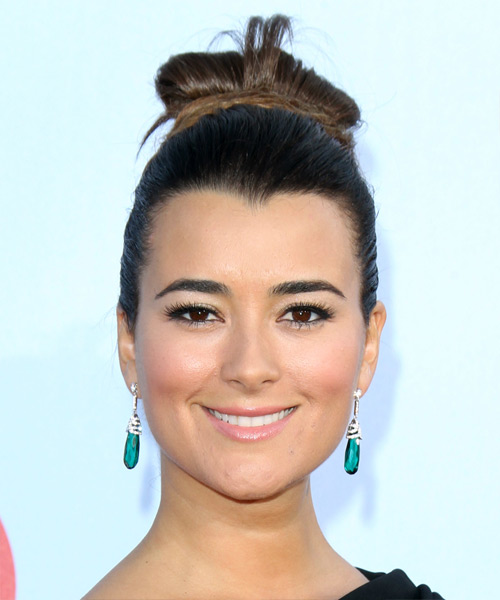 Cote de Pablo Updo Long Straight Formal Wedding - Dark Brunette