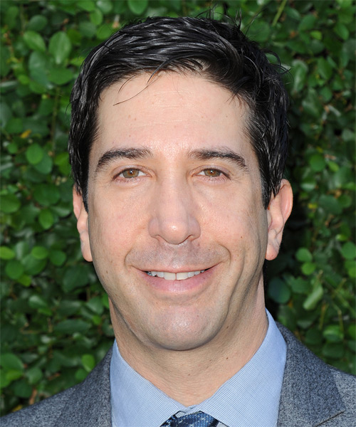 David Schwimmer Short Straight Formal Hairstyle - Black Hair Color