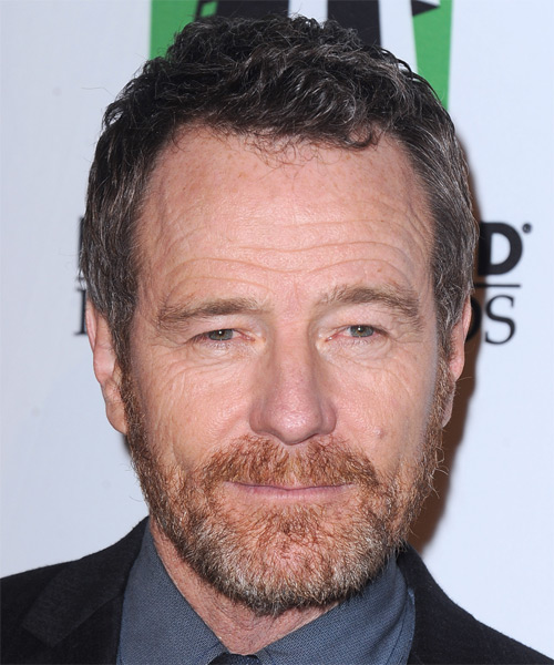 Bryan Cranston Short Straight Hairstyle - Medium Brunette (Grey)