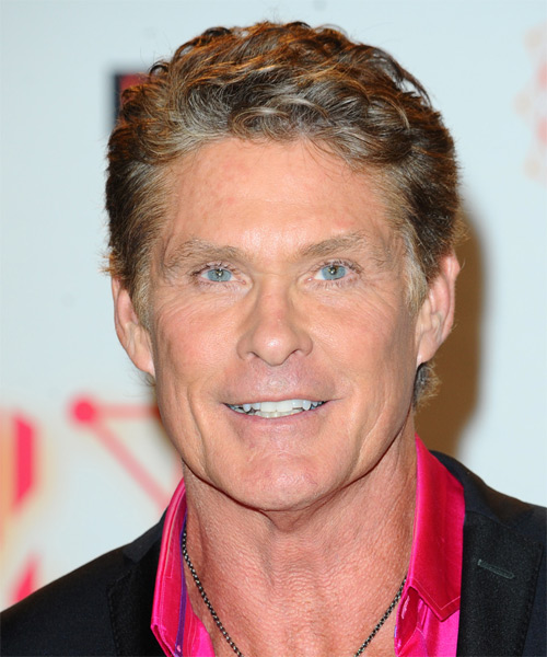 David Hasselhoff Short Wavy Casual Hairstyle - Medium Brunette (Golden) Hair Color