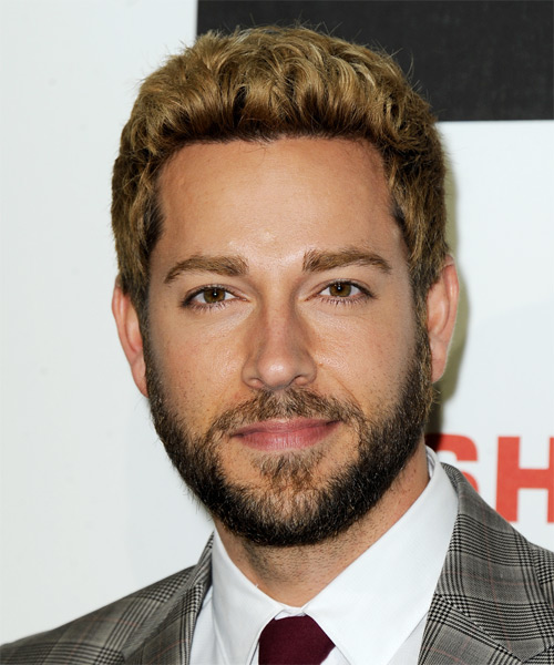 Zachary Levi Short Straight Casual Hairstyle - Dark Blonde (Golden) Hair Color