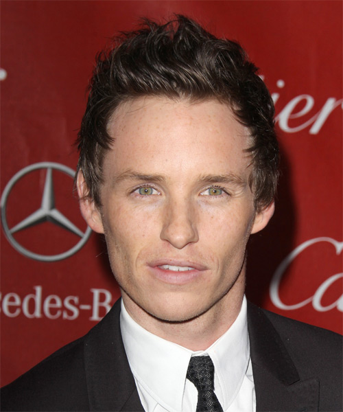 Eddie Redmayne Short Straight Hairstyle - Medium Brunette (Chocolate)