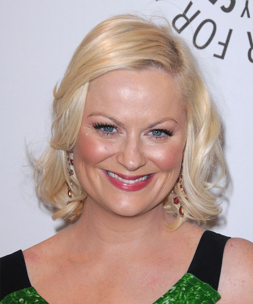 Amy Poehler Medium Straight Formal Hairstyle