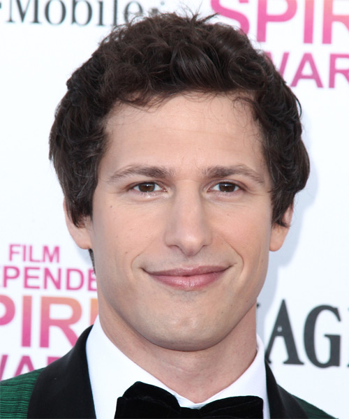 Andy Samberg Short Wavy Casual Hairstyle - Medium Brunette Hair Color