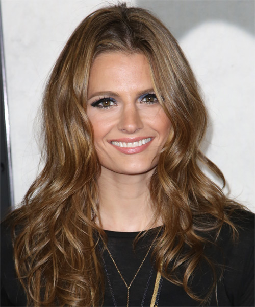 Stana Katic Long Wavy Formal Hairstyle - Medium Brunette (Caramel) Hair Color