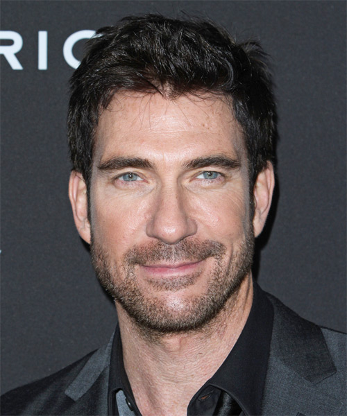 Dylan McDermott Short Straight Hairstyle - Black (Ash)