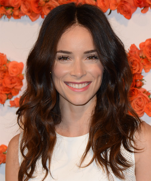 Abigail Spencer Long Wavy Casual Hairstyle - Medium Brunette (Auburn) Hair Color