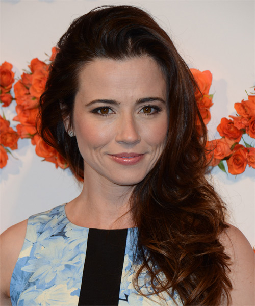 Linda Cardellini Long Straight Hairstyle - Dark Brunette