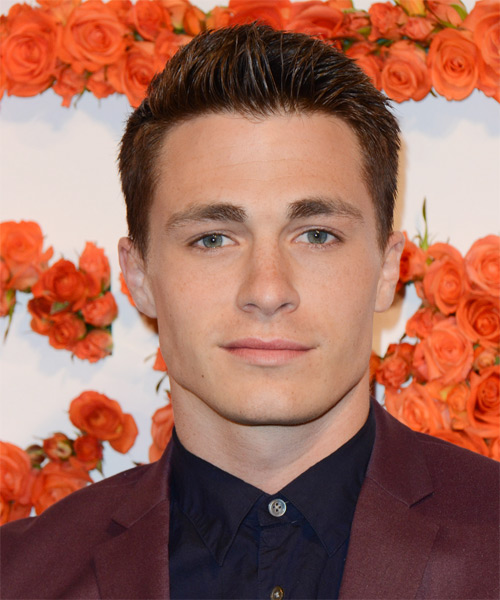 Colton Haynes Short Straight Hairstyle - Medium Brunette (Auburn)