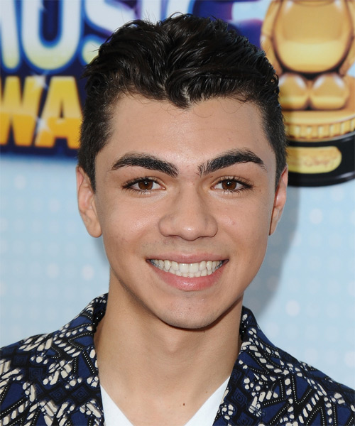 Adam Irigoyen Short Straight Hairstyle - Black