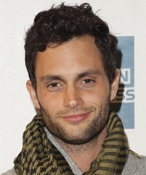 Penn Badgley Short Curly Hairstyle - Medium Brunette