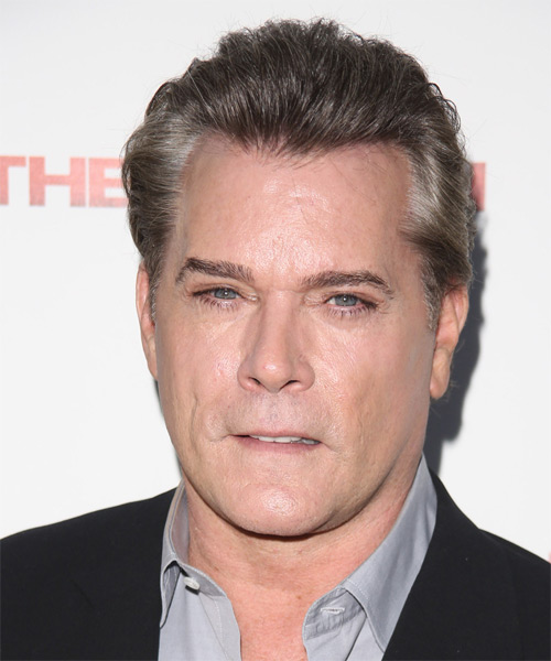 Ray Liotta Short Straight Hairstyle - Medium Grey
