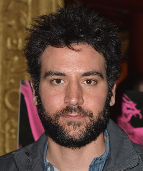 Josh Radnor Short Straight Hairstyle - Black