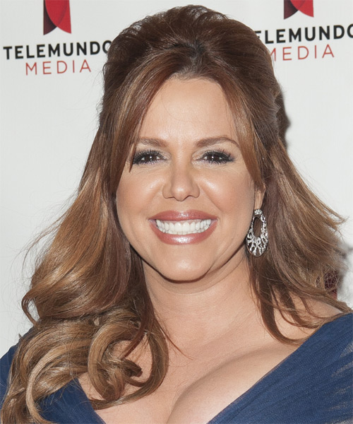 Maria Celeste Arraras Updo Long Straight Formal Half Up Hairstyle