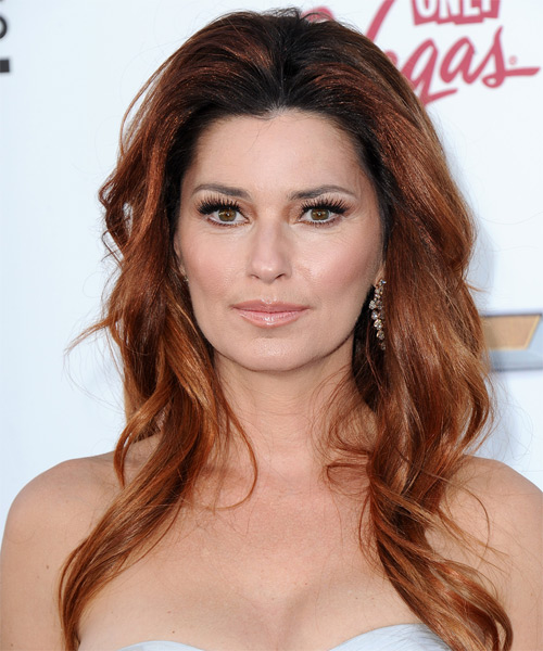 Shania Twain Long Straight Casual Hairstyle - Medium Brunette (Auburn)
