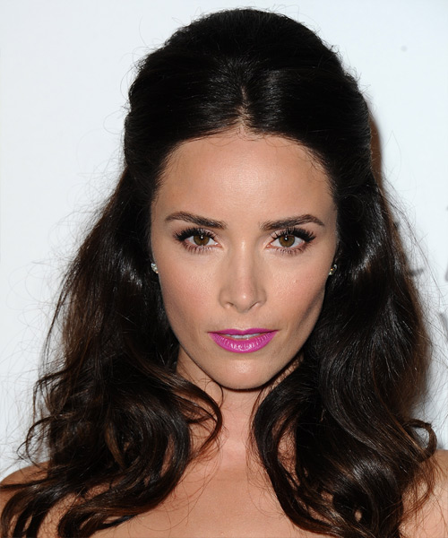 Abigail Spencer Straight Casual Half Up Hairstyle - Dark Brunette (Mocha) Hair Color