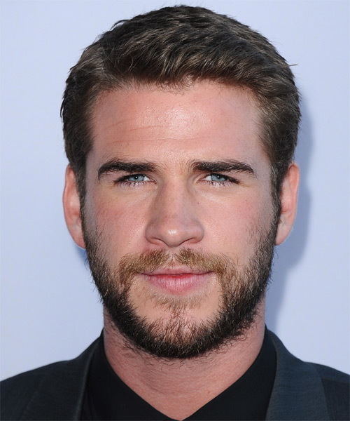 Liam Hemsworth Short Straight Hairstyle