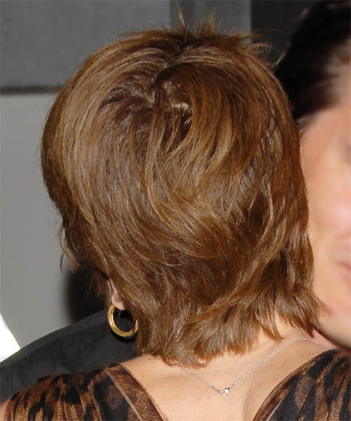 Diane Lane Short Straight Casual Hairstyle