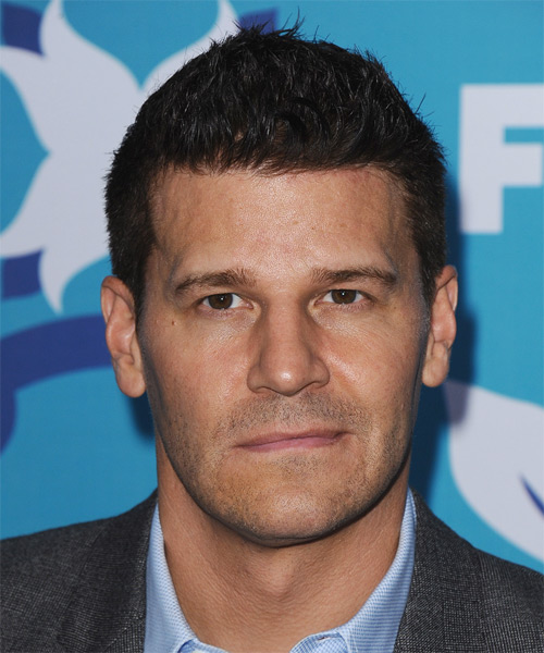 David Boreanaz Short Straight Hairstyle - Dark Brunette (Mocha)