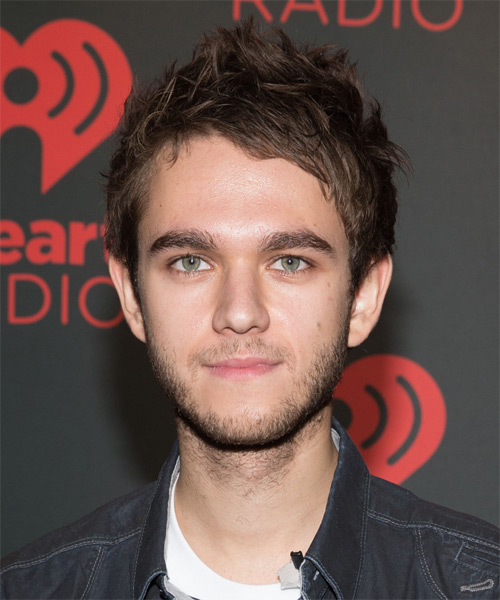 Zedd Short Straight Casual Hairstyle