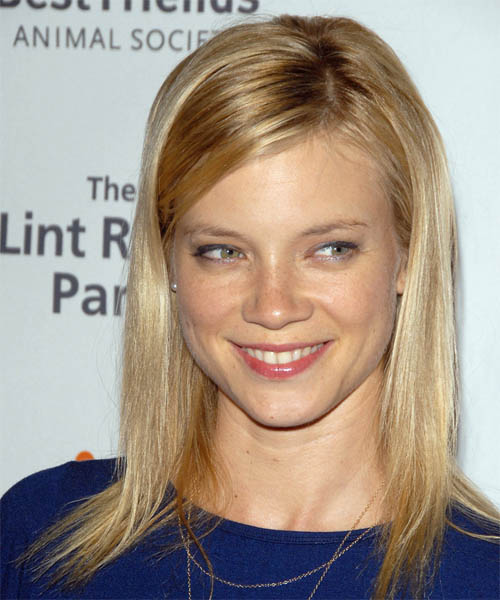 Amy Smart Long Straight Hairstyle