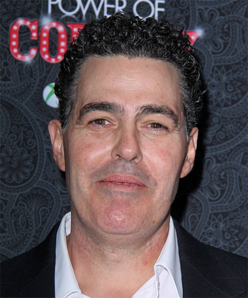 Adam Carolla Short Curly Hairstyle - Dark Grey