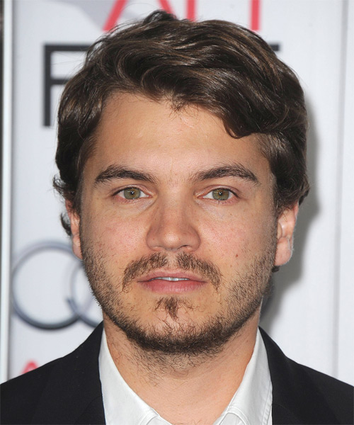 Emile Hirsch Short Straight Casual Hairstyle - Medium Brunette Hair Color