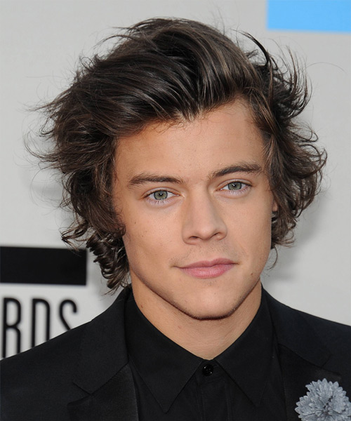 Harry Styles Short Straight Hairstyle - Dark Brunette (Ash)