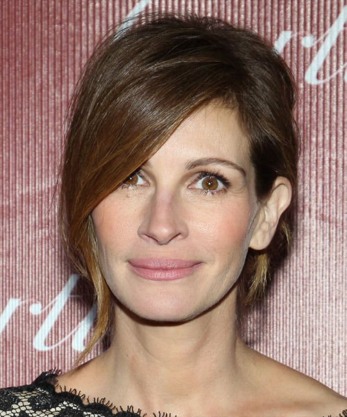 Julia Roberts Casual Straight Updo Hairstyle - Medium Brunette (Ash)