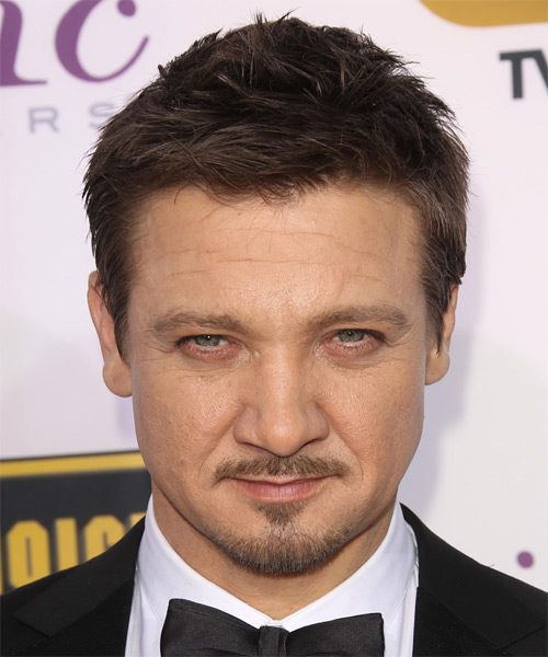 Jeremy Renner  Short Straight Casual Hairstyle