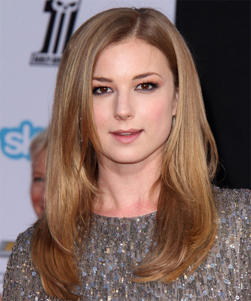 Emily VanCamp Long Straight Formal Hairstyle - Light Brunette (Caramel) Hair Color