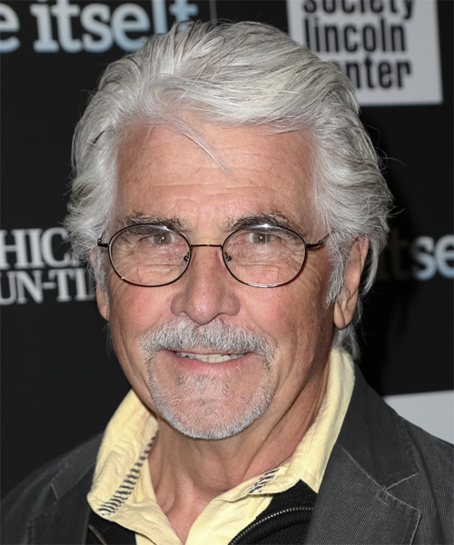 James Brolin Short Straight Hairstyle - Light Grey