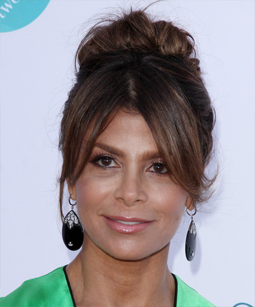 Paula Abdul Casual Straight Updo Hairstyle - Medium Brunette (Chocolate)