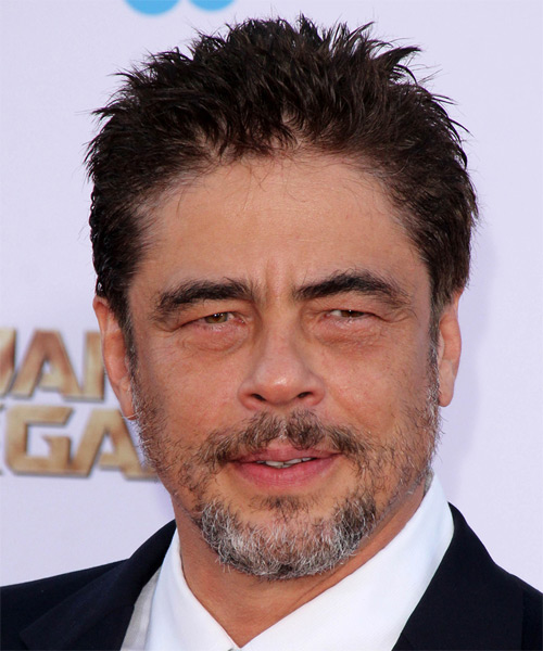 Benicio Del Toro Short Straight Hairstyle - Dark Brunette (Mocha)