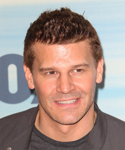 David Boreanaz Short Straight Casual  - Light Brunette (Caramel)
