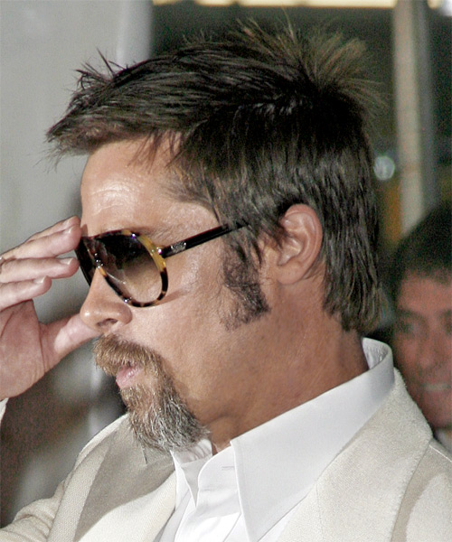Brad Pitt Short Straight Hairstyle - Dark Brunette (Ash) - side view 1
