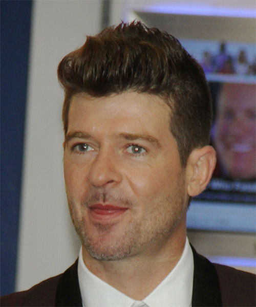Robin Thicke Short Straight Casual Hairstyle - side view